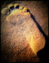 Human Footprint In Sand