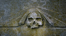 Close Up Of Human Skull