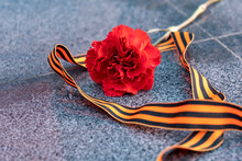 Red Carnation On A Marble Monu...