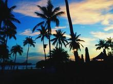 Silhouette Palm Trees At Beach...