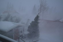 View Of Wind Blowing Through Trees And Houses From Window During Winter
