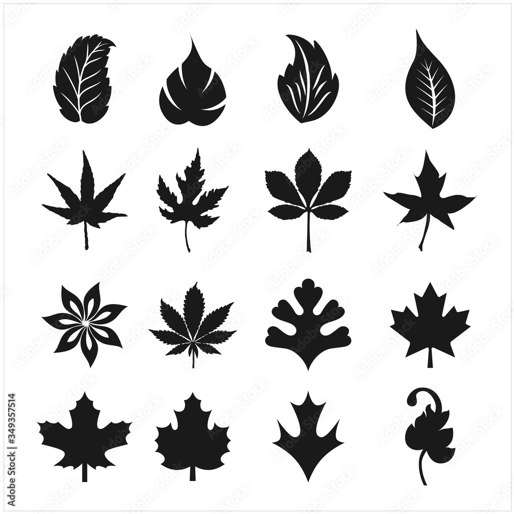 Fototapeta Leaf related icons set on background for graphic and web design. Creative illustration concept symbol for web or mobile app