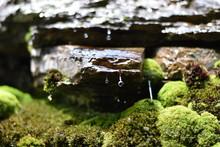 Water Flowing Down A Mossy Rock