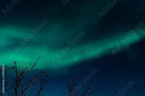Valokuvatapetti Northern lights of the Barents sea coast