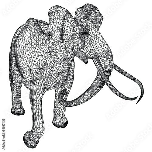 Elephant polygonal lines illustration Wallpaper Mural