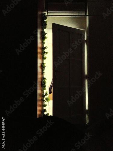 Ajar House Door Wallpaper Mural