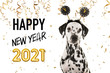 Leinwandbild Motiv Portrait of a pretty dalmatian dog wearing a new year diadem on a white background with golden party garlands and text happy new year 2021