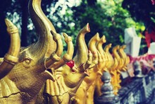Gold Colored Elephant Statues ...