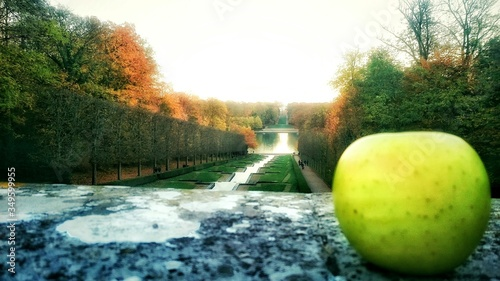 Photographie Close-up Of Granny Smith Apple On Retaining Wall At Park