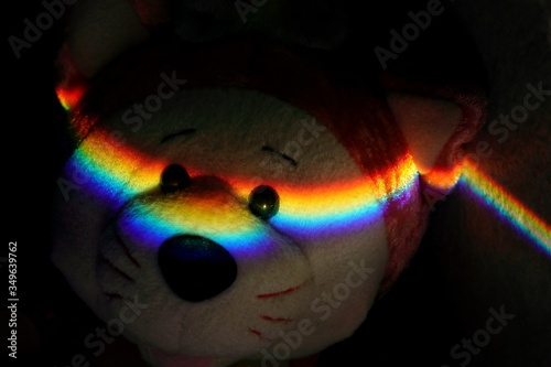 Close-up Of Prism Light On Teddy Bear In Darkroom