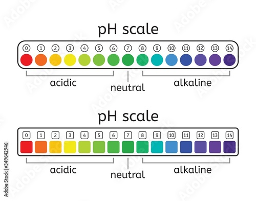 vector ph scale set of acidic, neutral and alkaline value chart Canvas Print