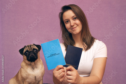 Vászonkép pug dog with veterinary passport immigrating or ready for a vacation