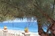 widok na plaze, widok na morze, widok na wode przez drzewo, nad morzem, Sycylia, Wlochy, woda
