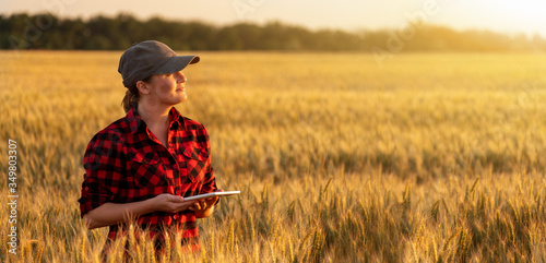 Leinwand Poster A woman farmer examines the field of cereals and sends data to the cloud from the tablet