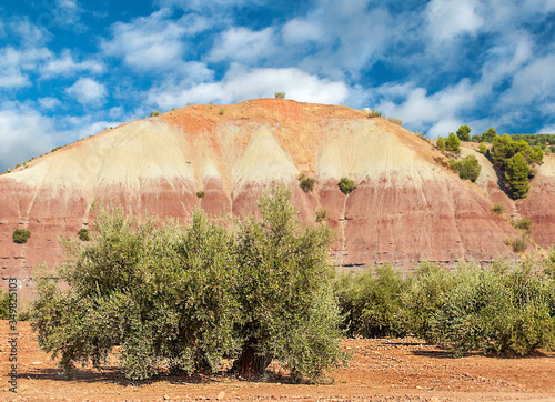 Mountains of Sierra de Cazorla in Andalusia in a sunny day in the south of Spain Canvas Print