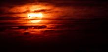 Bird Vs Sun. A Setting Firey S...