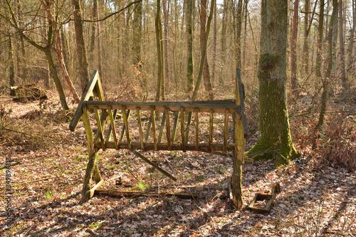 Fototapeta Drewniany pusty paśnik w lesie wśród drzew. obraz
