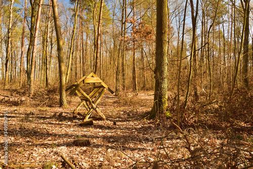 Obraz Drewniany pusty paśnik w lesie wśród drzew. - fototapety do salonu