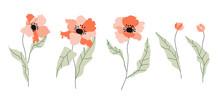 Isolated Poppy Flowers. Modern...