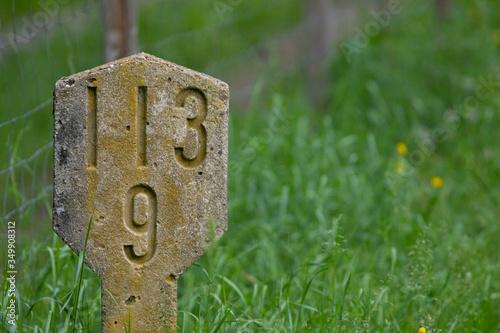 Cuadros en Lienzo Hito de piedra con el número 113 9 en La Ruta del Ferro (la Ruta del Hierro) Sant Joan de les Abadesses, El Ripollès, Girona, Catalunya, Espanya