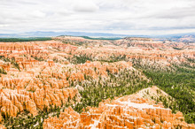 Hoodoos With Pine Trees And St...