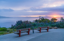 Bench In The Morning  At  Gold...