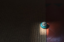 Still Life Image Of A Small Ro...