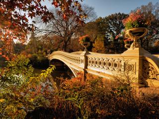 Fototapeta Nowy York Autumn in Central Park at the Bow bridge