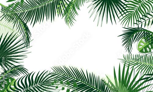 Valokuva Frame of tropical foliage