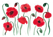 Set Of Red Poppies Flowers Wit...