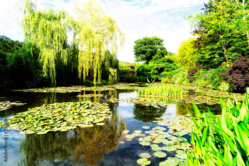 Pond with lilies in Giverny Canvas Print