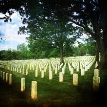 Tombstones In Arlington National Cemetery