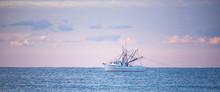 Shrimp Boats At Sunrise