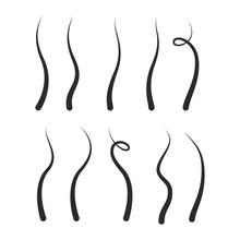 Hair Growth Icon Vector Design Illustration