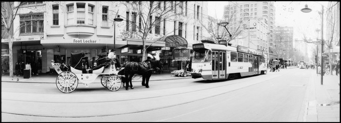 Horse Cart And Tram On City Street