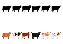 Various Cows In A Row