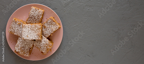Homemade Tasty Applesauce Cake on a pink plate on a gray background, top view Wallpaper Mural