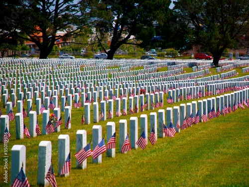 Canvastavla American Flags In Cemetery