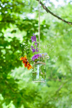 Low Angle View Of Flowers In Glass Jar Hanging Against Branches