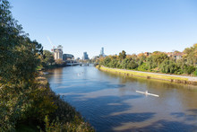 Rowers On The Yarra River In M...