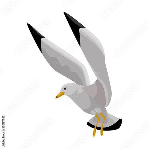 Bird gull vector icon Canvas-taulu