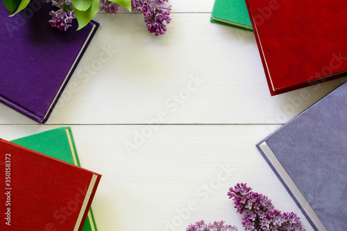 Various hardback books on a white background Slika na platnu
