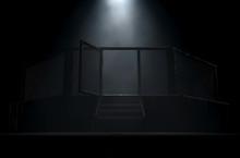 MMA Cage Door Spotlight