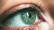 A woman's green eye with close-up makeup
