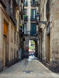 canvas print picture - Old narrow street in Barcelona, Catalonia, Spain. Architecture and landmark of Barcelona. Cozy cityscape of Barcelona