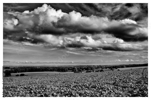 Tela Majestic Cloudscape Over Barren Field