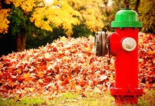 Red Fire Hydrant Against Autumn Leaves Heap In Park