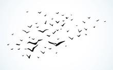 Duck Flock In The Sky. Vector ...