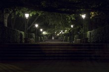 Stairs Along Trees And Lamp Posts At Night