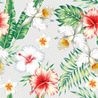 Plumeria hibiscus flowers green leaves seamless various backgrou